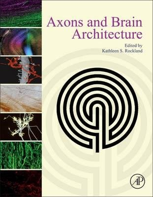 by-rockland-kathleen-author-axons-and-brain-architecture-by-dec-2015-hardcover