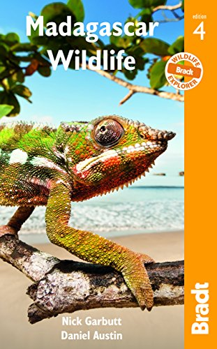 Madagascar Wildlife: A Visitor's Guide (Bradt Wildlife Guides)