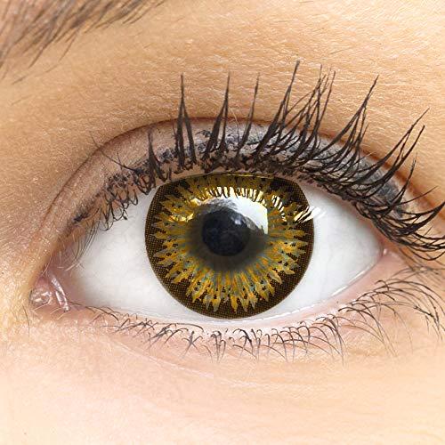 Braune Farbige Kontaktlinsen Caramel Braun Sehr Stark Deckende SILIKON COMFORT NEUHEIT von GLAMLENS + Behälter - 1 Paar (2 Stück) - DIA 14.50 - ohne Stärke 0.00 Dioptrien