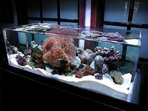 Pure White Aquarium Fish Tank Silica Sand. Large 25kg Bag. Test