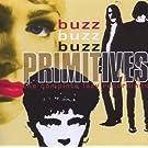 Buzz Buzz Buzz - The Complete Lazy Recordings