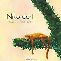 Niko Dort par Kouam Tawa