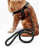 PLHF Hund skaliert Leine Brust Harness Hund Geschirre Hund Seil nicht, xl, army green