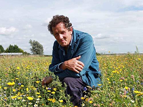 Von Wildblumen und Vorgärten -