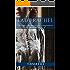 Lady Rachel: Dieci piccole mosse per conquistare il tuo eroe VOL. 3