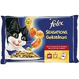 Purina Felix Sensations Gelatinas comida para gatos Selección Surtido de Carnes 10 x [4 x 100 g]