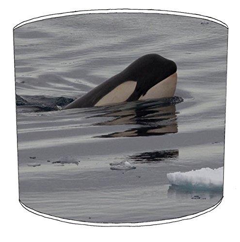 20,5cm Decke Killer Whale orca Print Lampenschirme 3 -