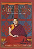 Practical Meditation with Buddhist Principles [DVD]