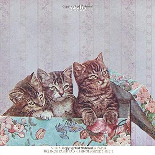 Vintage Kittens 8x8 Inch Scrapbook Paper: Scrapbooking Paper Pack, 15 Single-Sided Sheets for Card Making Printmaking Background Pages (Decorative Craft Paper, Band 30) -