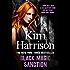 Black Magic Sanction (The Hollows Book 8) (English Edition)