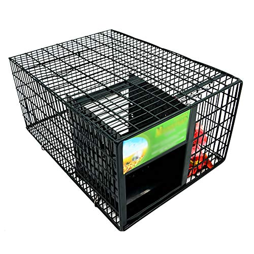 JB-BSQ Catch Cage, Live Animal Trap Control, Vollautomatischer Home Outdoor Mauskäfig, Mit Futterbereich, Schwarz, 30x22x15cm - Animal Cage Trap
