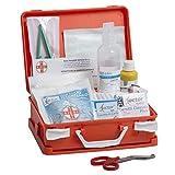 AIESI Cassetta valigetta medica di pronto soccorso con ALLEGATO 2 per aziende meno 3 dipendenti DM388/DL81 ✔ Made in Italy