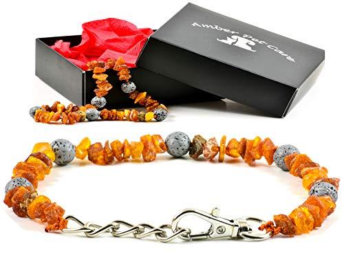 AmberPetCare Bernsteinkette für Hunde und Katzen mit Metallverschluss aus Roh Baltischer Bernstein (25-30)