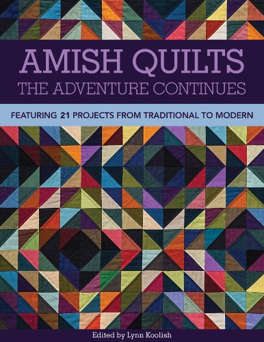 Amish Quilts The Adventure Continues: Featuring 21 Projects from Traditional to Modern (Amish-quilts)