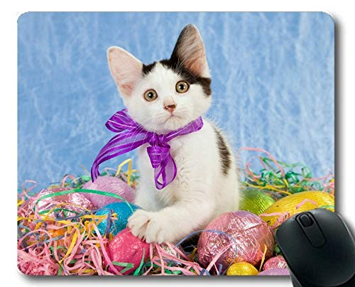 sterei Kätzchen Tier Ostern Katze Ei Mauspad, Mauspad für Computer cat015 ()
