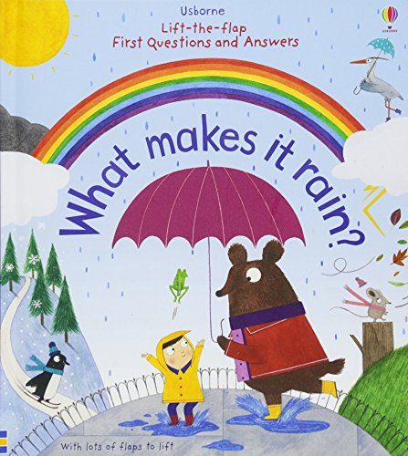 What Makes It Rain (Lift the Flap First Questions and Answers)