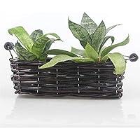 2pezzi rettangolare Handmade decorativa in vimini intrecciato per piante con 2piccolo manico - Basket Weave Planter
