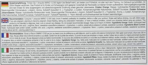 All Stars Amino 12.000 Liquid, Black Currant, 18 x 25 ml Fläschchen, 450 ml