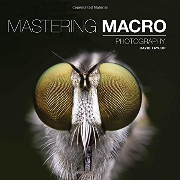 Mastering Macro Photography (Mastering): Amazon.co.uk: David