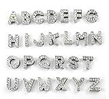 Fully 10MM DIY Straß Buchstaben Charms Totenkopf Hunde Blumen Infinite Pfoten Herz Stern Kreuz Crown f. Hundehalsband Katze Collar Armband (Silver, I)