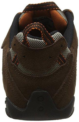 Hi-Tec Penrith Low Waterproof, Chaussures de Randonnée Basses Homme Marron (Chocolate/orange)