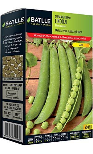 Semillas Leguminosas - Guisante enano Lincoln 250 Gr. - Batlle