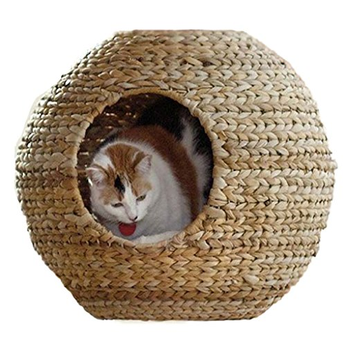 Dishes, Feeders & Fountains Pet Supplies Tapis Pour Bols En Chat Fantaisie 43 X 28 Cm Ferribiella Rapid Heat Dissipation