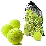 Bramble 15 Set di Palline da Tennis rigide - Ideali per Lo Sport, i Giochi, la Spiaggia e Le attività all'aperto - Include la Borsa di Trasporto in Rete - Gioco Cani Palla, Pallina Tennis Cane