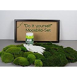 DIY-Moosbild selber Machen, Wandbilder selber kleben, Moosbild selbst Gestalten, do it Yourself Set Moods kleben Wanddeko selbst herstellen Deko Wandbild Komplett-Set Bilderrahmen (Weiß, 60x30 cm)