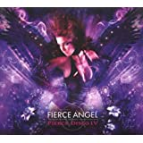 Fierce Angel Pres.Fierce Disco 4