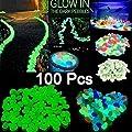 Kicode Glow Kiesel Eine Packung mit 100 Aquarium Dekor Licht Luminous Stein Aquarium für Gehwege Kies von Kicode bei Du und dein Garten