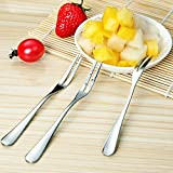 G2PLUS 10 PCS Dessert Fork Appetizer Fruit Forks Cocktail Sticks Tiny Stainless Steel Fork with Two Prongs for Bistro Pubs Bars and Party