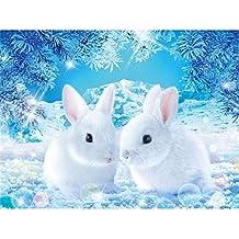 BaZhaHei de Pintura, Blanco Conejo de 5D Bordado Pinturas Rhinestone Pegado DIY Pintura Diamante punto