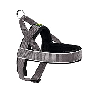 Hunter Racing 60964 Norwegian-Style Harness Size XL