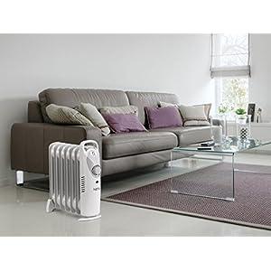 NETTA Calentador eléctrico para el Aceite, con termostato,