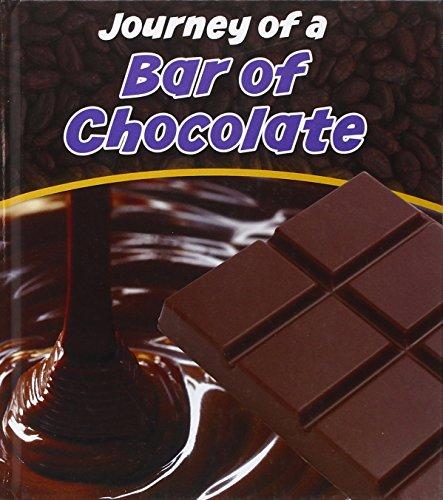 Bar of Chocolate (Young Explorer) (Adult Chocolate Bar)