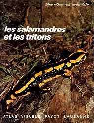 Les salamandres et les tritons