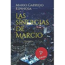 Las Sinergias de Marcio: Sátiras de programadores e informáticos dentro del mundo corporativo de las empresas multinacionales de consultoría, tecnología y desarrollo de software
