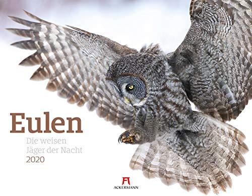 Eulen - weise Jäger der Nacht 2020, Wandkalender im Querformat (54x42 cm) - Tierkalender / Vogelkalender mit Monatskalendarium