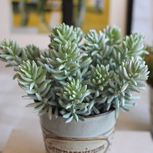 turelifes-realista-cute-verde-home-garden-sinttica-artificial-cactus-suculentas-plantas