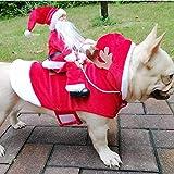 Costume natalizio per animali Babbo Natale in sella a un gatto Vestito da Natale Vestito da festa Vestito da vestiario per cani di piccola taglia Cats