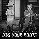 Songtexte von Florida Georgia Line - Dig Your Roots