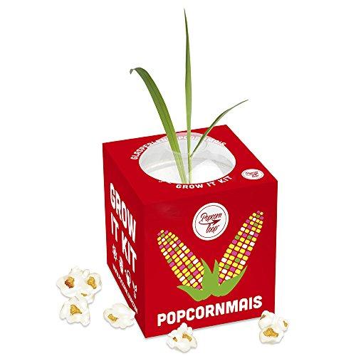 Pflanzen Anzucht Maispflanze - Anzuchtset Anzuchtserde Zimmergewächshaus Gentechnikfrei Mais Geschenkidee Mit Anleitung - Demeter-geschenk-set