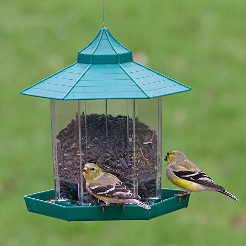 garden bird feeders. Black Bedroom Furniture Sets. Home Design Ideas