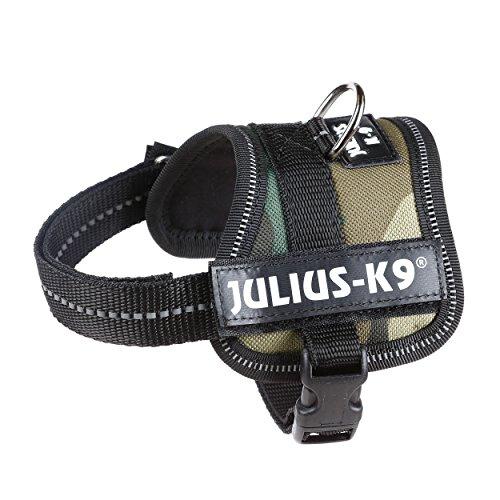 Julius K9 162M-BB1 K9-Powerharness