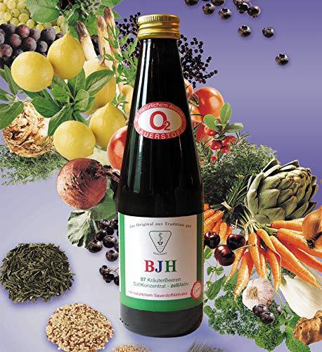 BJH 97 Kräuter Beeren Saft konzentrat – natürliche Versorgung mit bioaktiven Pflanzenstroffen