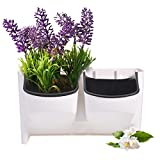 Mini-Blumenkasten für vertikale Aufhängung. Aussen- oder Innenanwendung. Stapelbar. Für Blumen, Früchte, Gemüse.