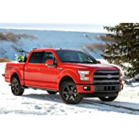 Classica e pubblicità muscoli e per auto Ford, Truck F-150 (2014) Art-Stampa su carta satinata, 10 mil Archival rosso lato anteriore finestra statica fondo da neve, Carta, Red Front Side Static Snow Background View, 91,4 x 61 cm