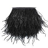 Vejaoo 1M Straußfeder Stoffstreifen fransen Band Straußenfedern Feder für Bekleidung DIY Nähen Handwerk VJ012 (1M Black)
