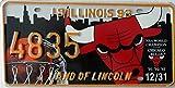 USA Nummernschild ILLINOIS ~ US Kennzeichen ~ License Plate ~ Blechschild